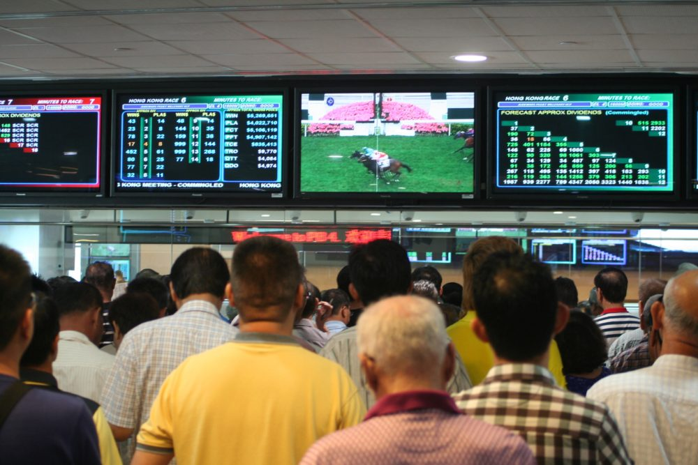 Hong kong horse racing betting black dog sports betting